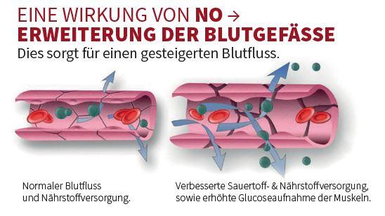 Eine Wirkung von NO: Erweiterung der Blutgefäße. Dies sorgt für einen gesteigerten Blutfluss und damit für eine verbesserte Versorgung der Zellen mit Sauerstoff und Nährstoffen!